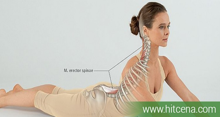 MEDICAL YOGA - Individualni termin (program sastavljen od vežbi joge, meditacije i disanja) uz strucni tim doktora i instruktora