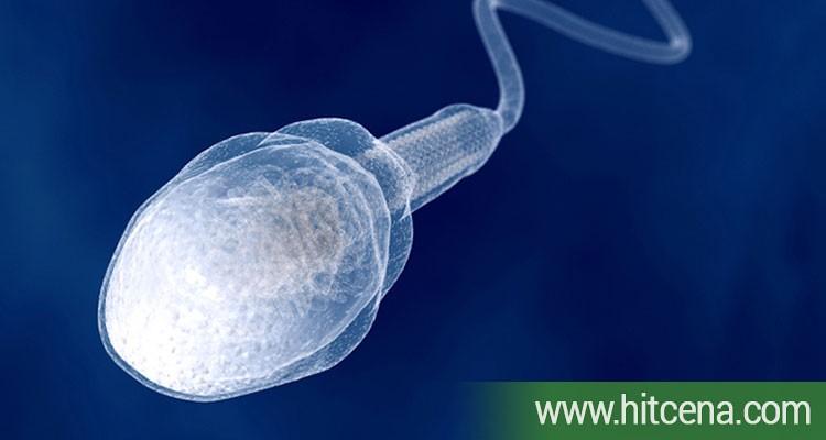 Spermogram i spermokultura u poliklinici LaboMedica po hit ceni od 1000 rsd